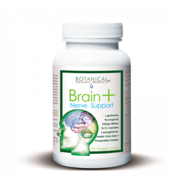 Increase Brain Function Naturally